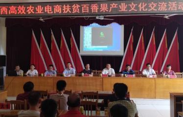 藤县政府邀请盛畅百香果签约保价护航